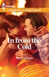 Mary Sullivan, In From the Cold, Harlequin Superromance, Accord Colorado, Callie MacKintosh, Gabe Jordan, Jordan brothers